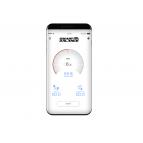 Гироскутер Smart Balance PRO 10,5 Черный Карбон